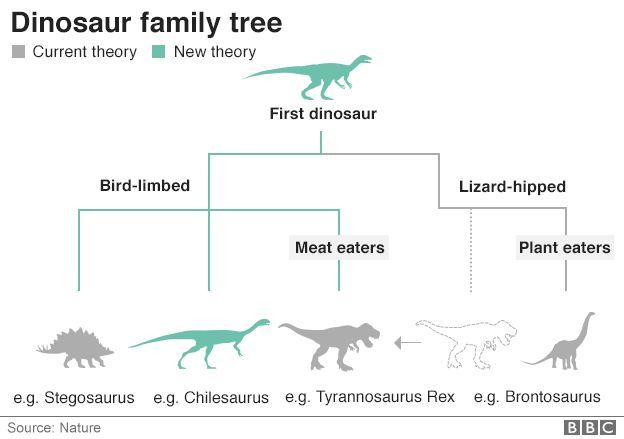The New Dinosaur Family Tree Coffee Spoons