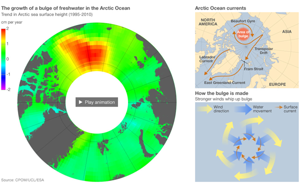 The fresh water bulge in the Arctic Ocean