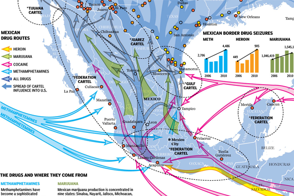Cropping of the Mexican Cartel infographic
